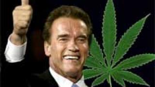 marihuana-schwarzenegger