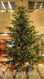 hotel hilton christmas tree