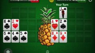Pineapple OFC