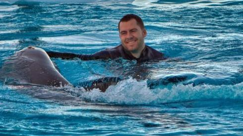 cates dolphin