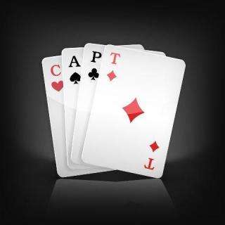 Logo CAPT 2013black