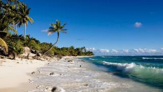 beach 23756